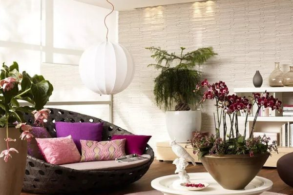 Цветы в горшках в интерьере квартиры