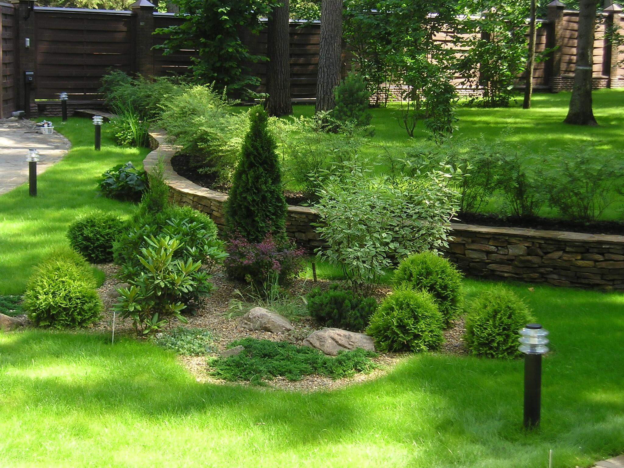 Хвойные растения в ландшафтной архитектуре