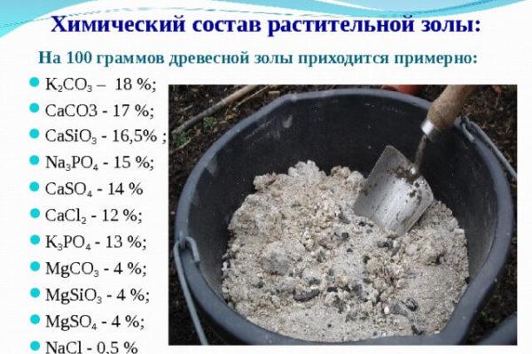 На фото: химический состав древесной золы