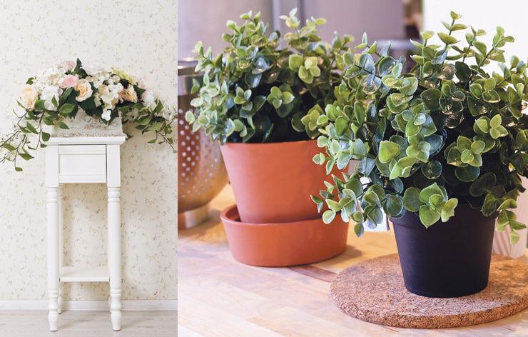 На фото: живые и искусственные растения