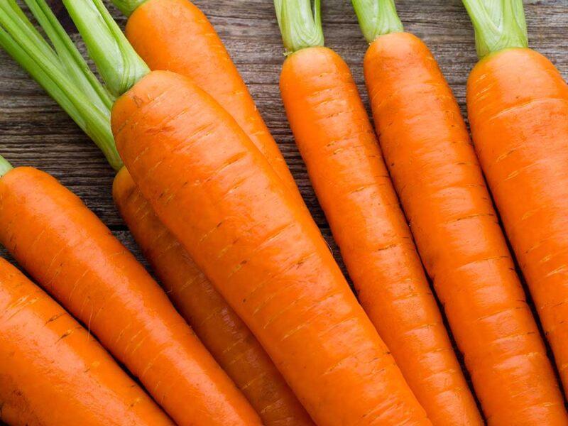 На фото: сорт моркови Амстердамская