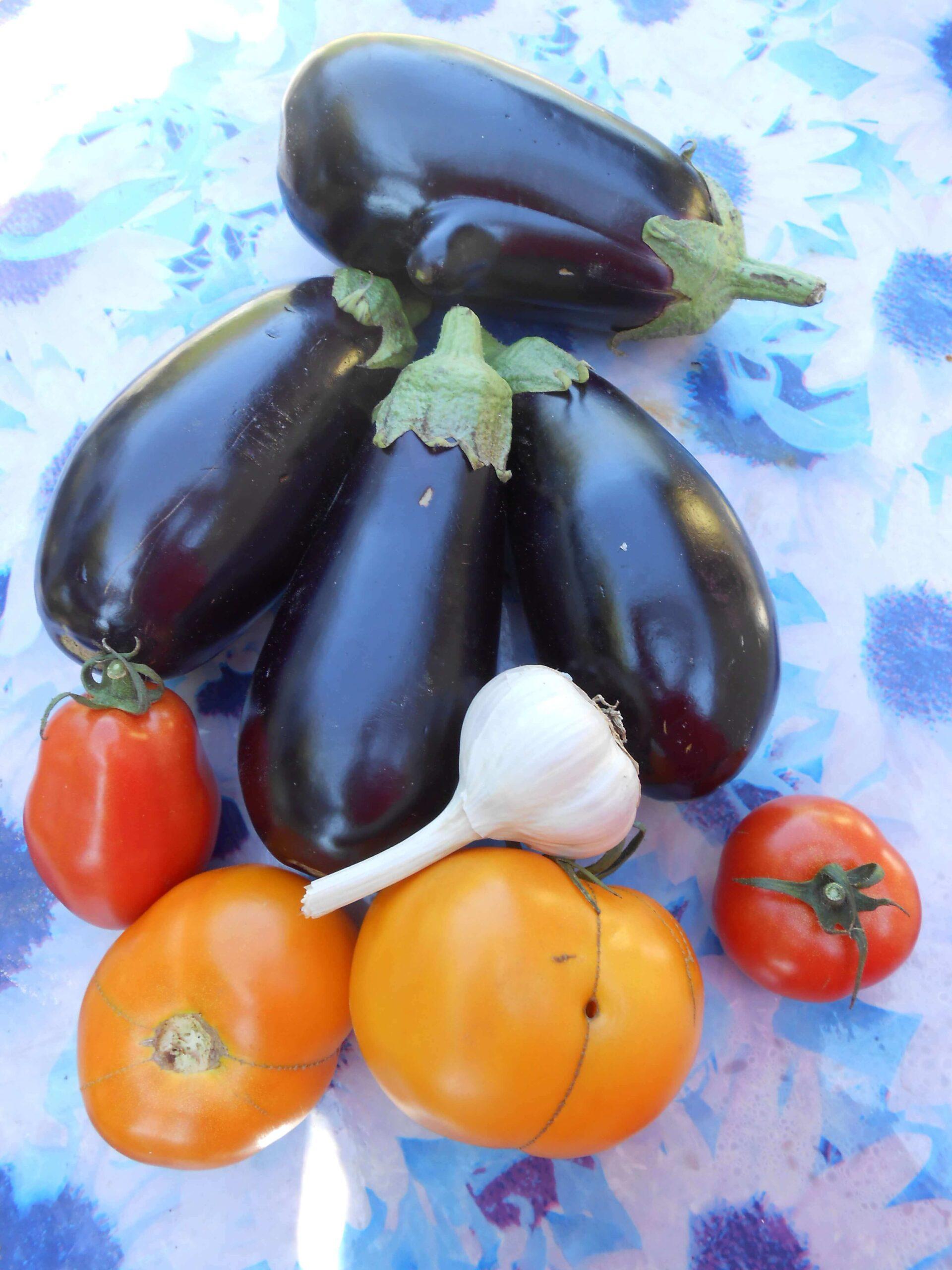 На фото овощи: баклажаны, томаты и чеснок / Авторское фото