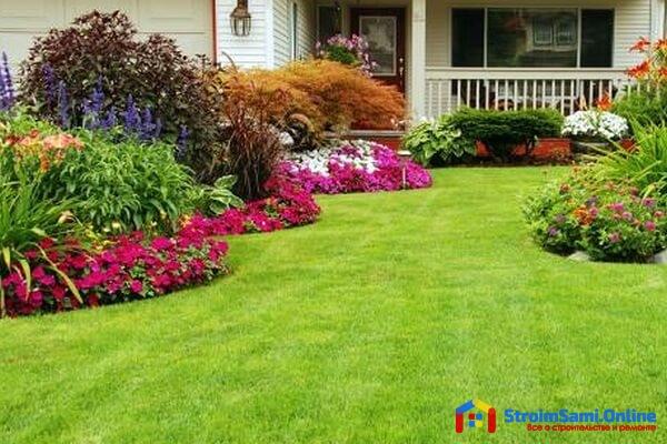 На фото: как обустроить газон на даче своими руками