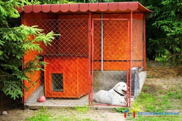 На фото: вольер для собаки своими руками