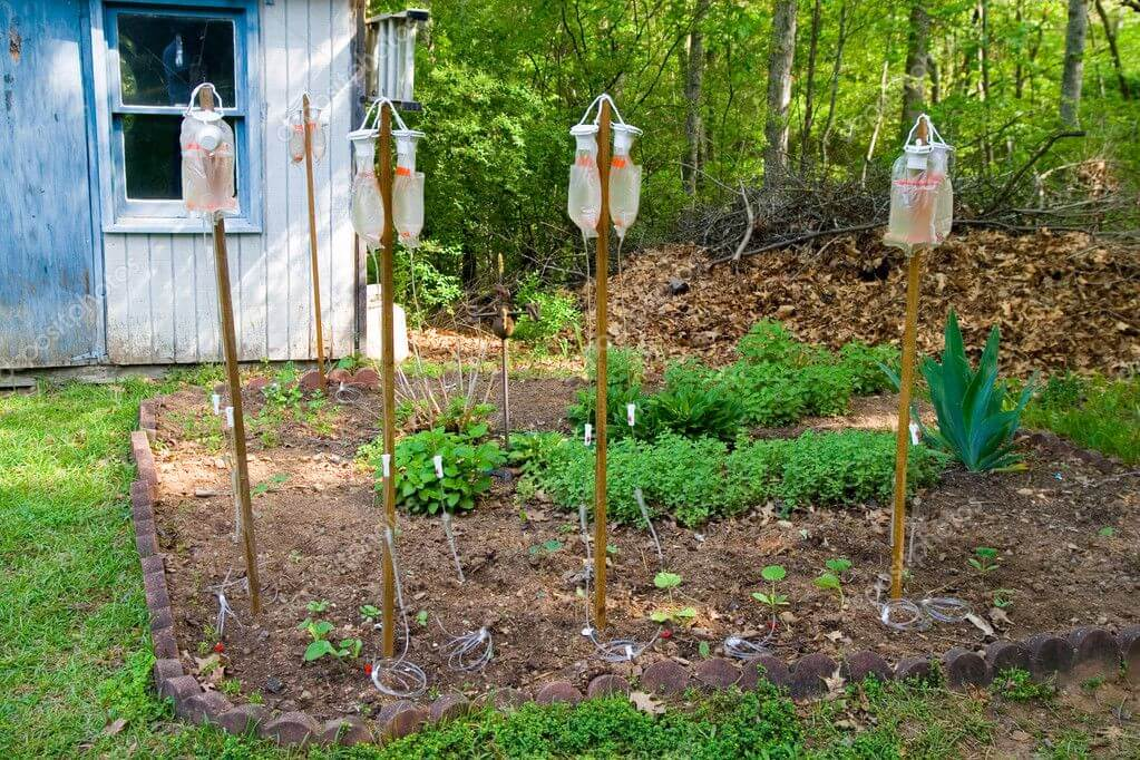 Экономный полив огорода