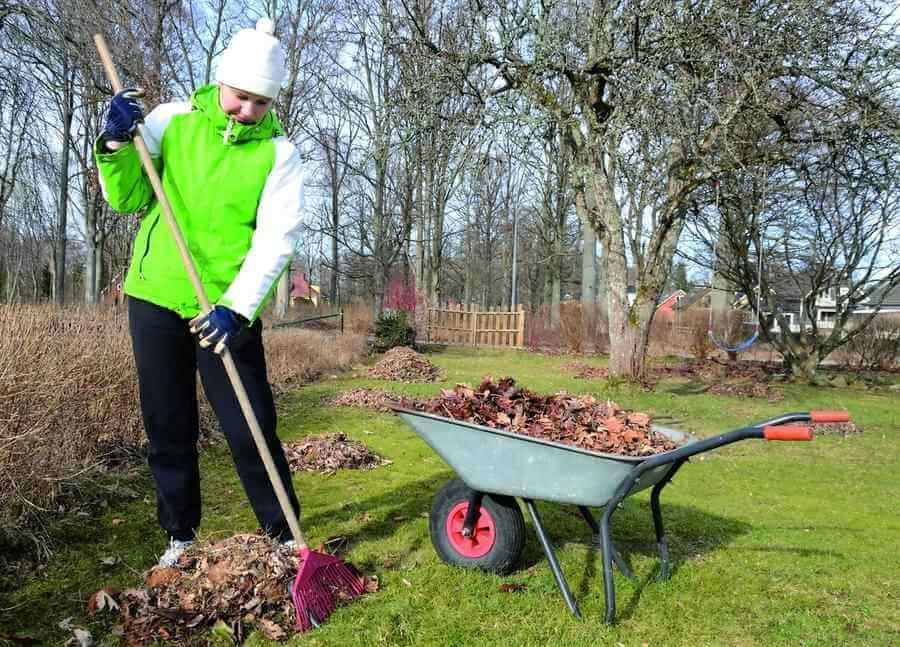 На фото: весенние работы в саду и огороде